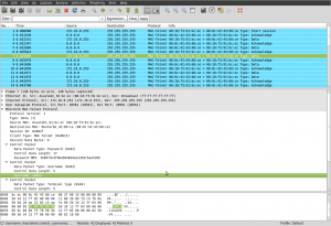 Screenshot of Mac-Telnet dissecter